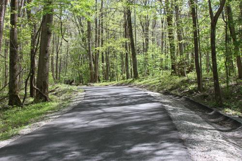 A Beckoning Road