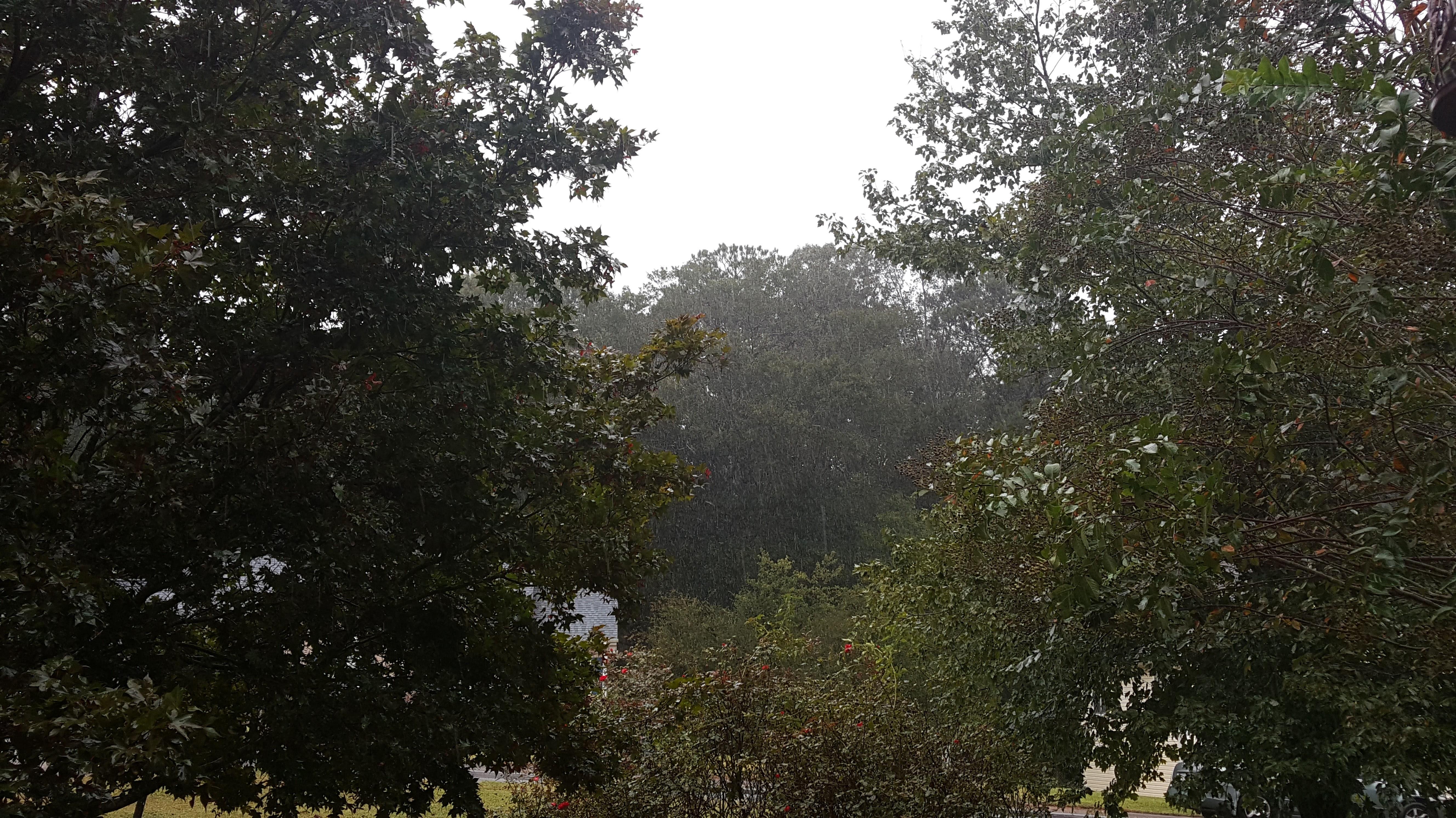 Rain -- TS Irma September 11, 2017, NE GA